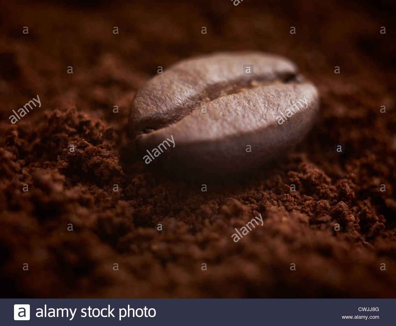 Close up of grain de café sur café moulu. Photo Stock