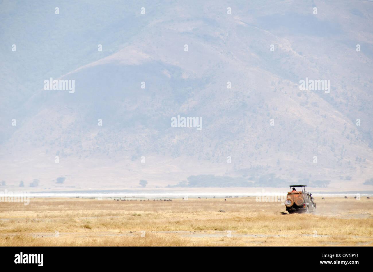 Zone de conservation de Ngorongoro, en Tanzanie - safari d'un véhicule sur la plaine de la Ngorongoro Crater Photo Stock