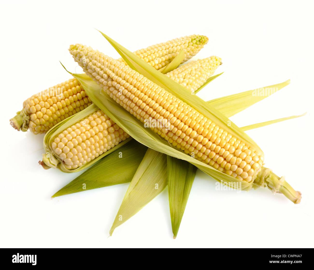 Le maïs frais fruits avec des feuilles vert isolé sur fond blanc Photo Stock