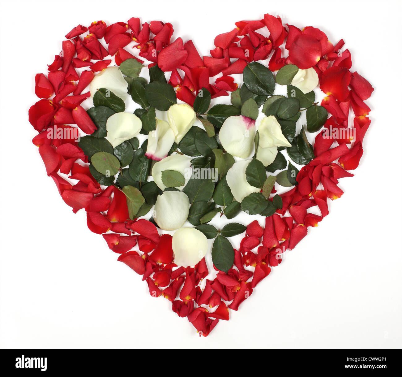 En Forme De Coeur Bouquet De Roses Rouges Et Blanches Sur Fond Blanc