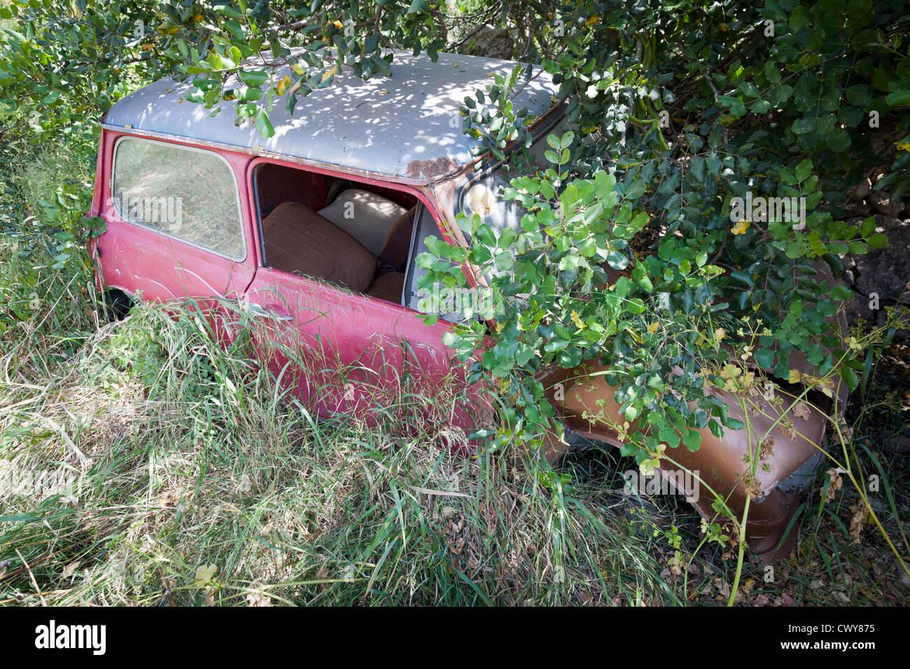 Abandonnés à la rouille Mini abandonnés sous un arbre et sous-bois vert Photo Stock