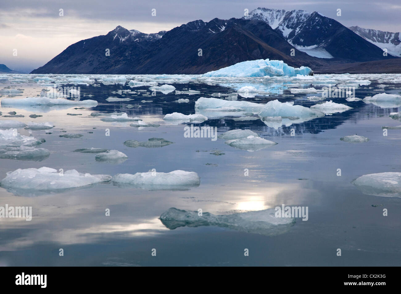 La banquise et les icebergs flottant dans l'Lilliehookfjorden, Svalbard, Spitzberg, Norvège Photo Stock