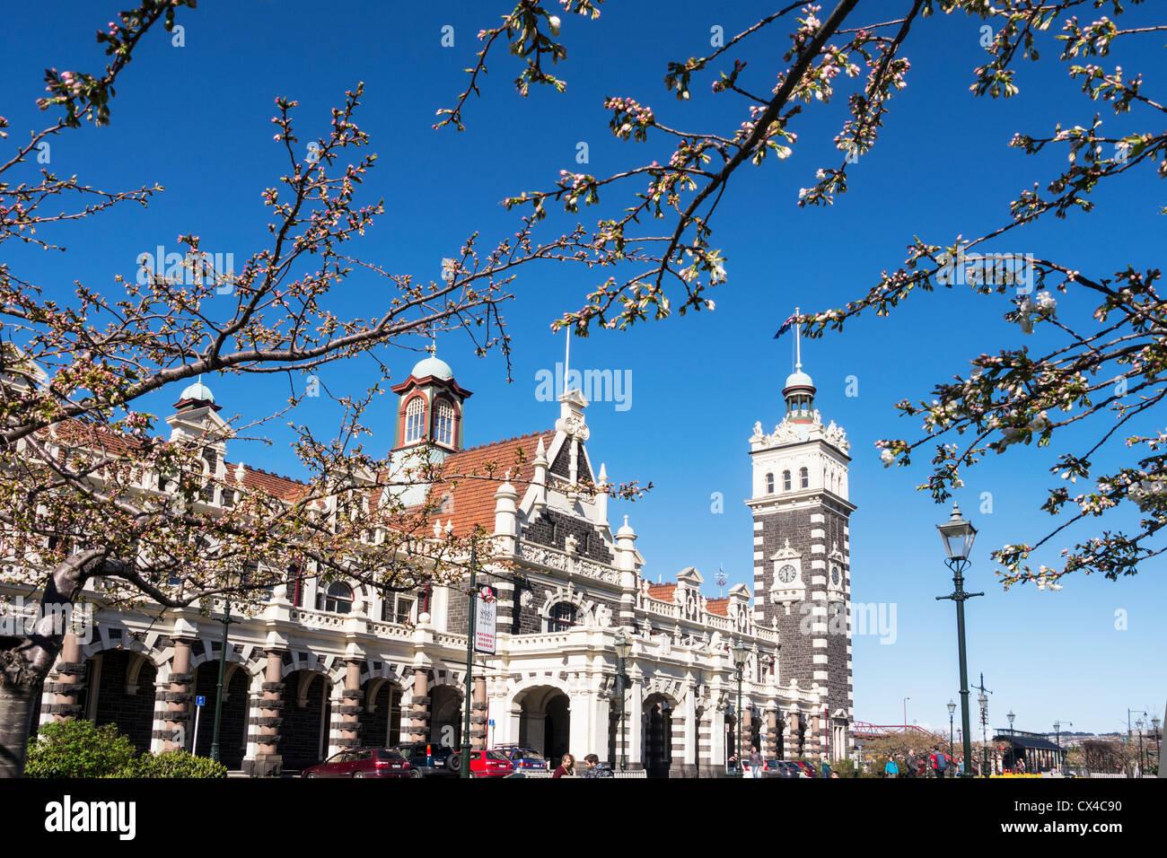 La gare de Dunedin et fleur de printemps. Photo Stock