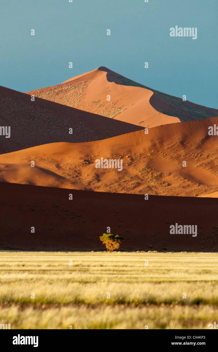 Dunes de sable rouge, Nabib-Naukluft, Parc national du désert de Namib, Namibie Sossusvlei, Afrique du Sud Photo Stock