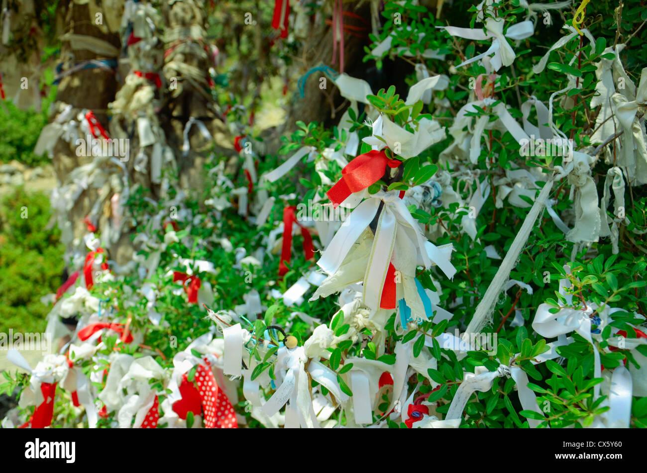 Close-up de rubans sur les branches de l'arbre des désirs Banque D'Images