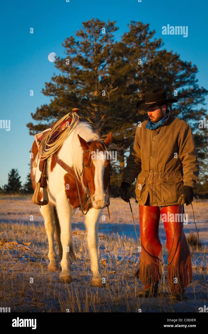 Cowboy sur son cheval dans un ranch dans le nord-est du Wyoming Photo Stock