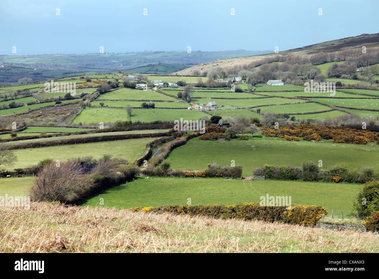 Champs et fermes sur le bord de Dartmoor à nord-est en direction de Chagford, Devon, Angleterre, Royaume-Uni, Photo Stock
