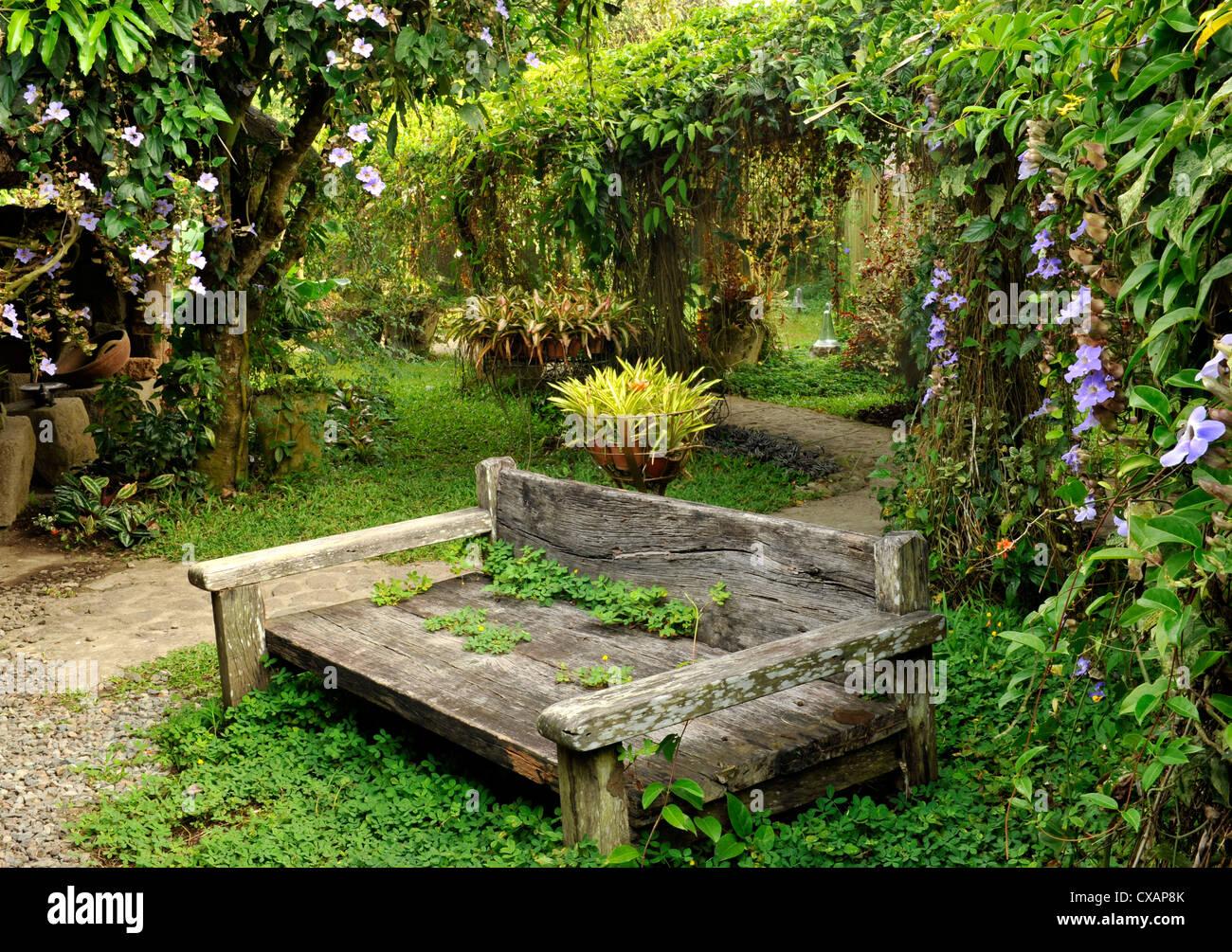 La lune jardin dispose d'une série de treillis avec Thunbergias et d'autres vignes, conçu par P. Geertz à Tagaytay, Philippines Banque D'Images