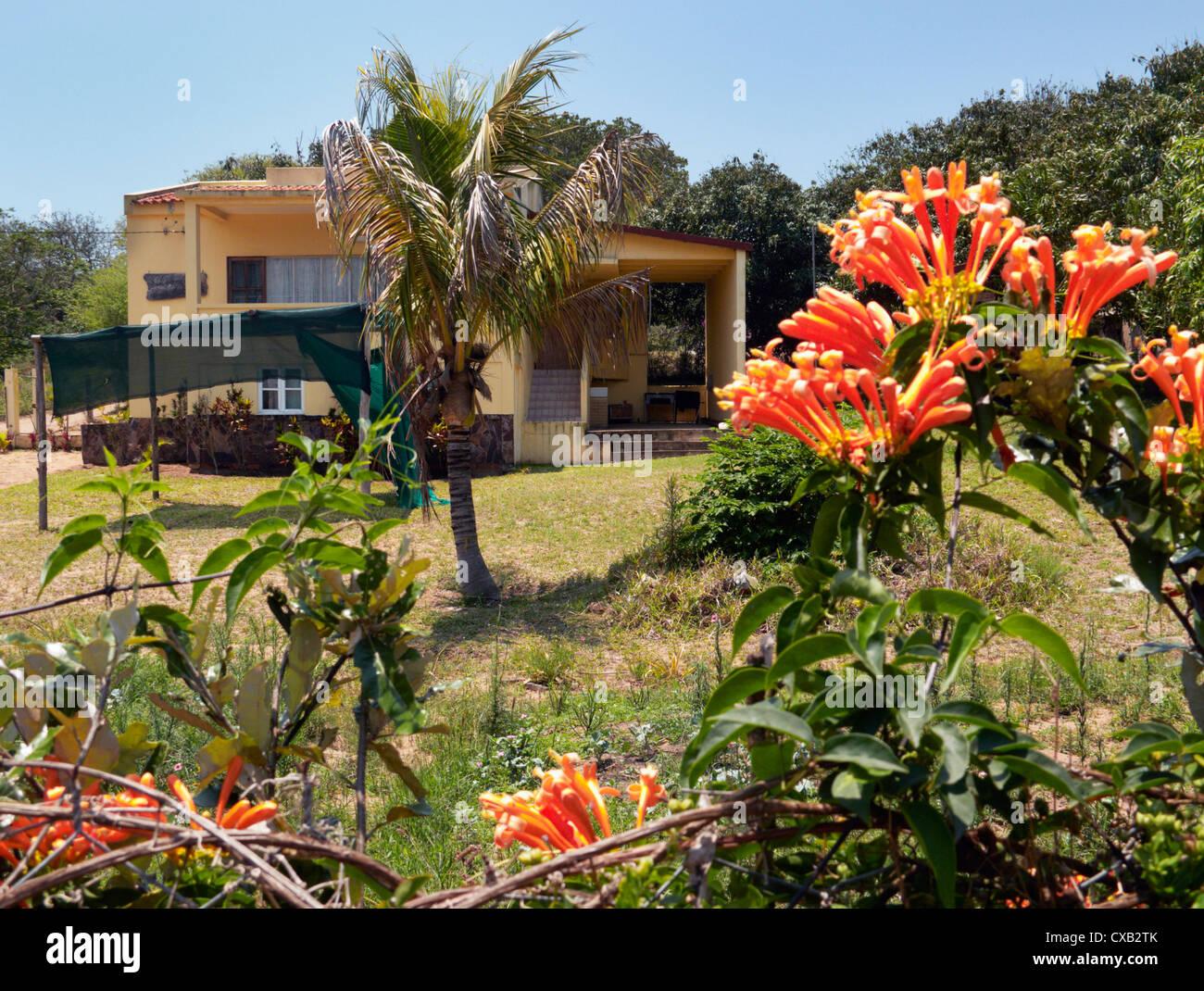 Maison et jardin. Ponta do Ouro, dans le sud du Mozambique. Photo Stock