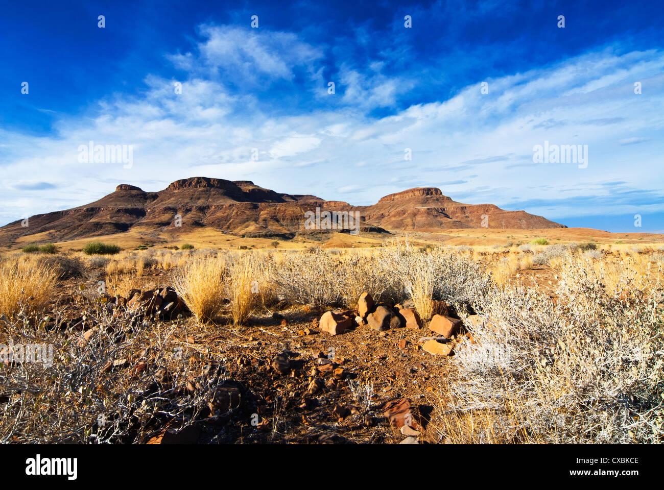 Zone de vallée de la rivière Huab, Damaraland, région de Kunene, Namibie, Afrique Banque D'Images