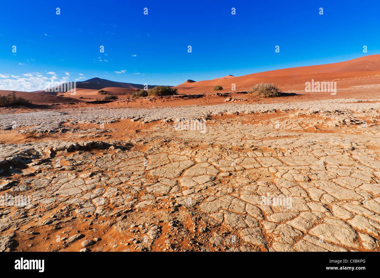 Vue sur dunes, Sossusvlei, Désert du Namib, le Namib Naukluft Park, Namibie, Afrique Photo Stock