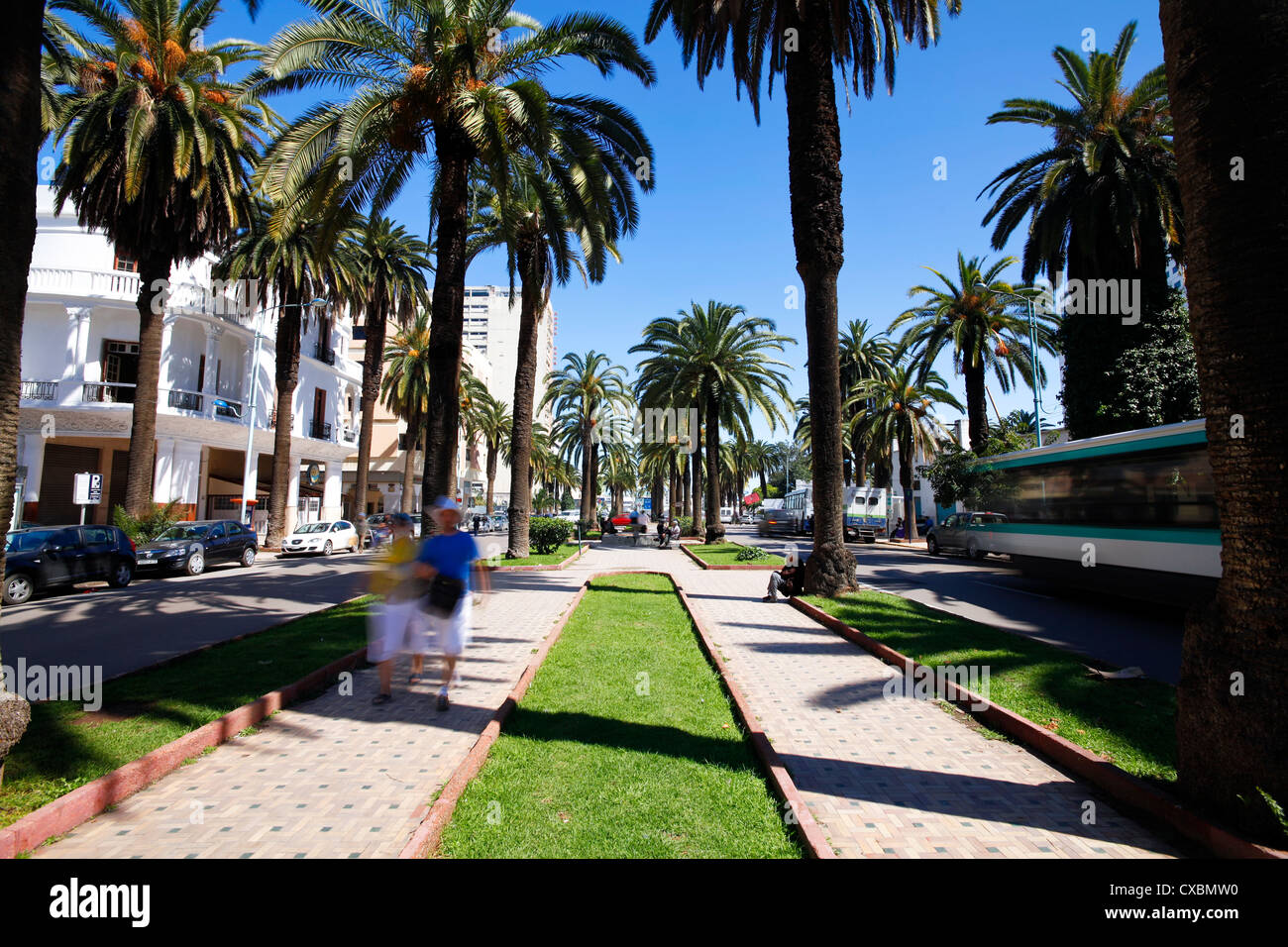 Le Boulevard de Rachidi, une large rue bordée d'arbres typiques dans le quartier smart Lusitania, Casablanca, Photo Stock