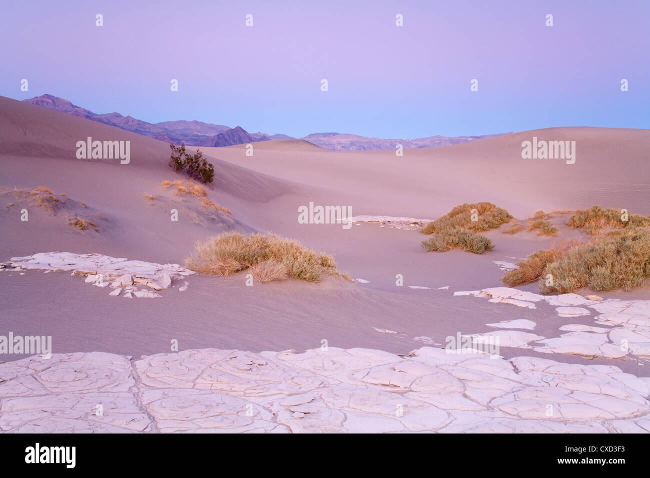 La boue séchée dans la télévision Mesquite Sand Dunes, Death Valley National Park, California, États-Unis d'Amérique, Banque D'Images