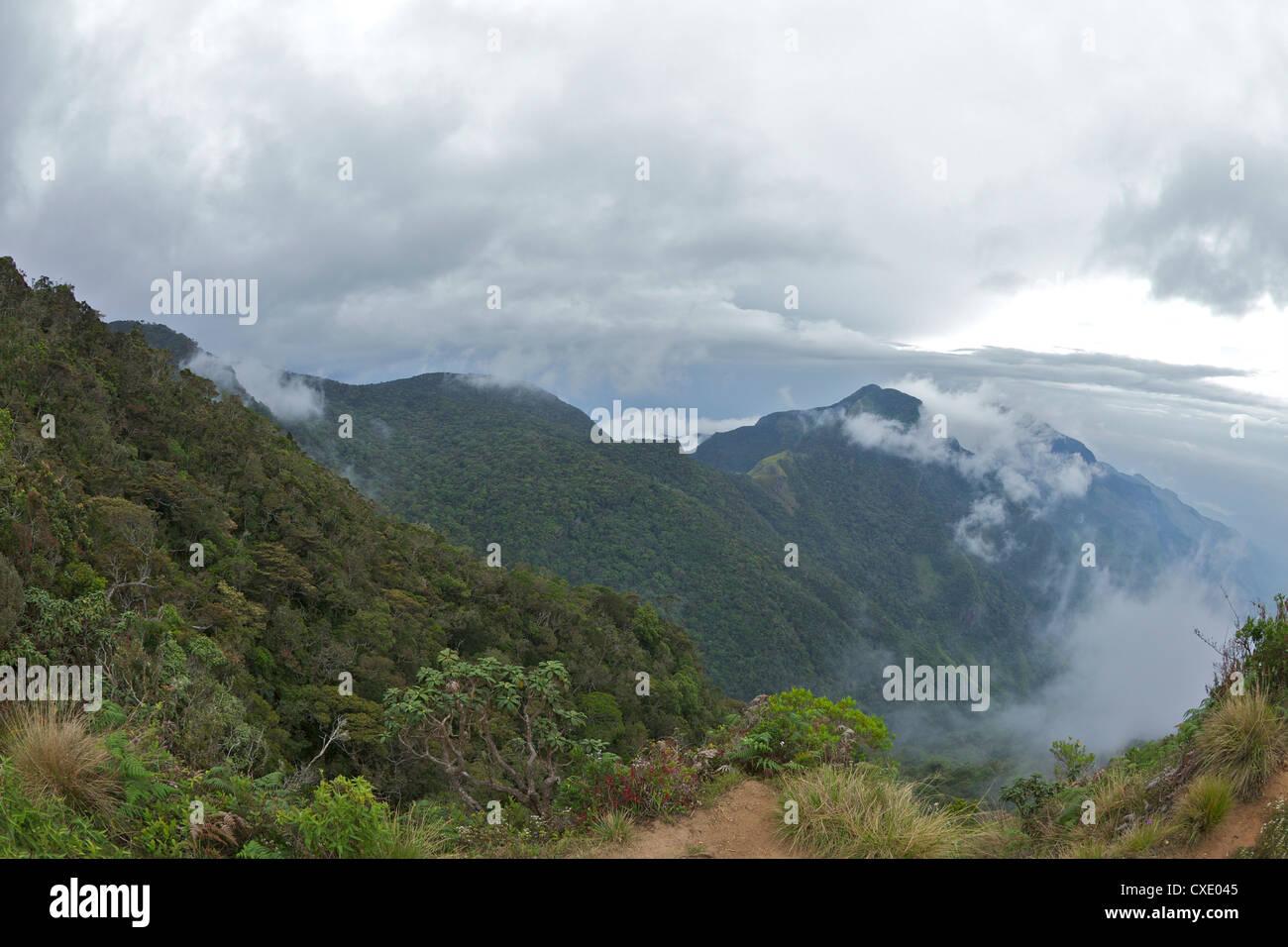 Mini World's End, le Parc National de Horton Plains, le Sri Lanka, l'Asie Photo Stock