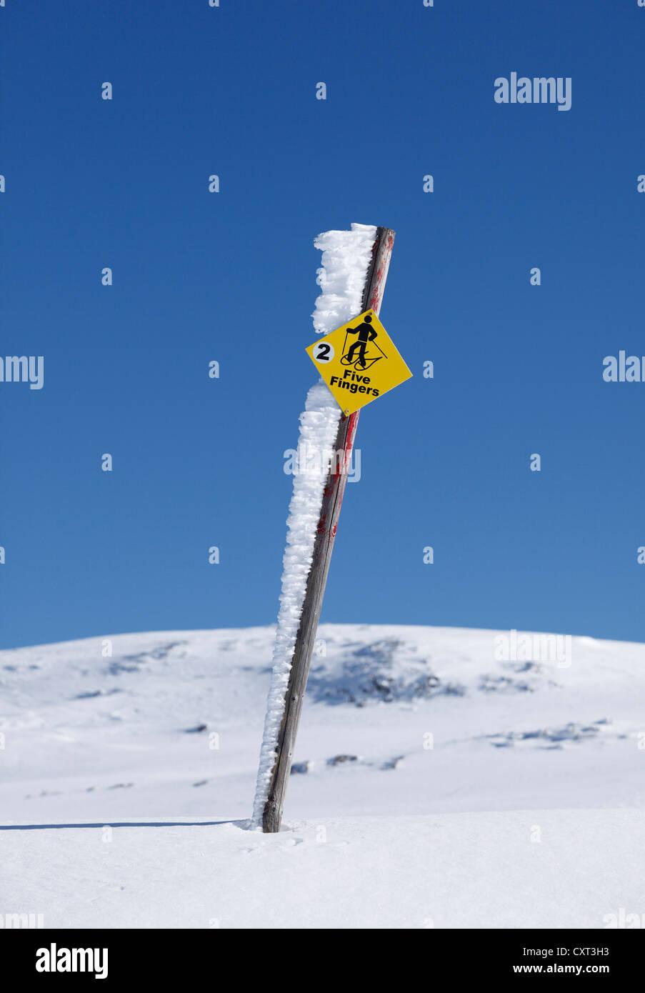 Pour les randonneurs en raquettes orientation pour les cinq doigts sur la montagne Dachstein Krippenstein, Montagnes, Photo Stock