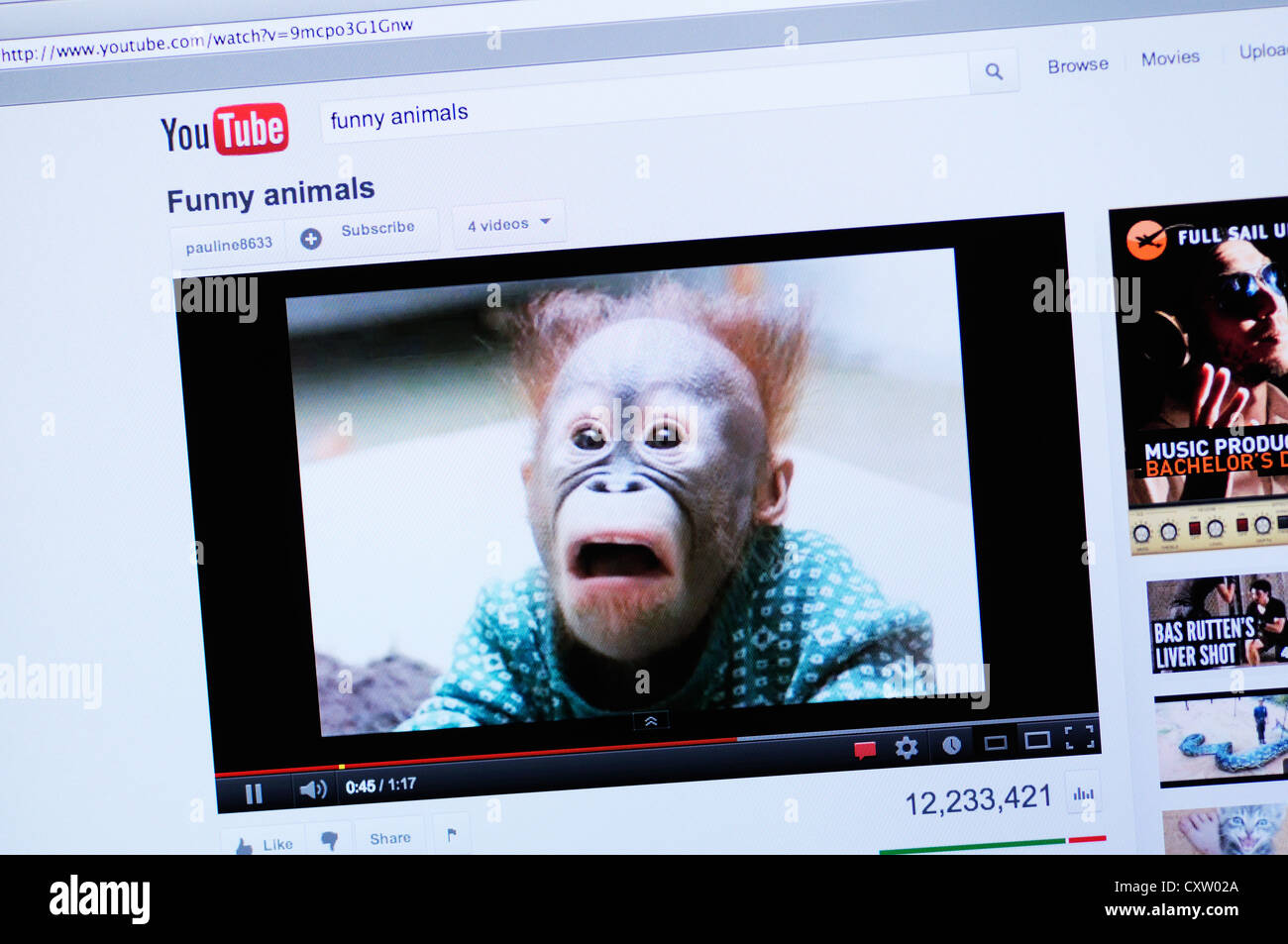 Site Web Youtube Video En Ligne D Animaux Droles Photo Stock Alamy