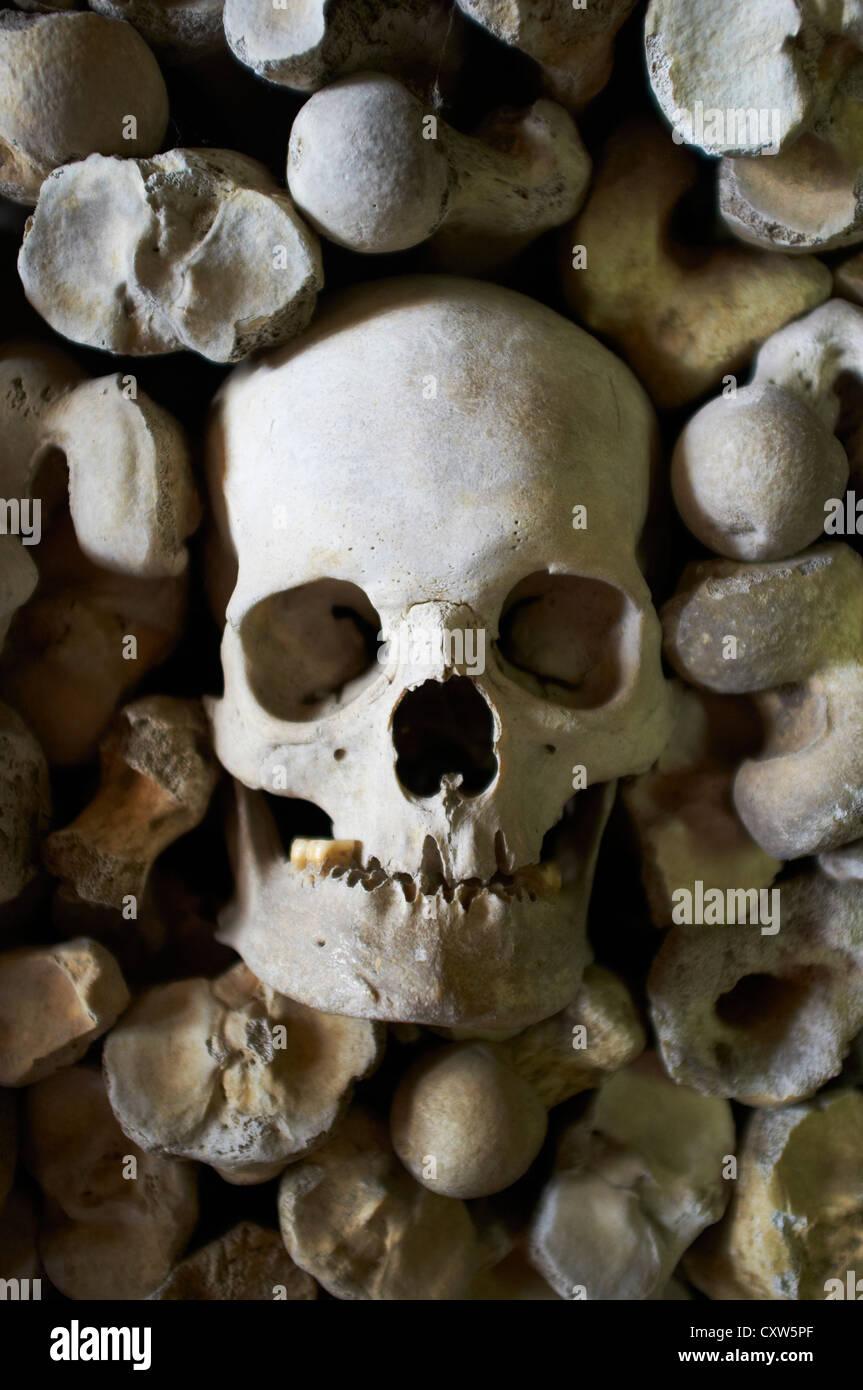 Les droits de l'os dans la crypte de l'église St Leonard's Hythe Kent UK Banque D'Images