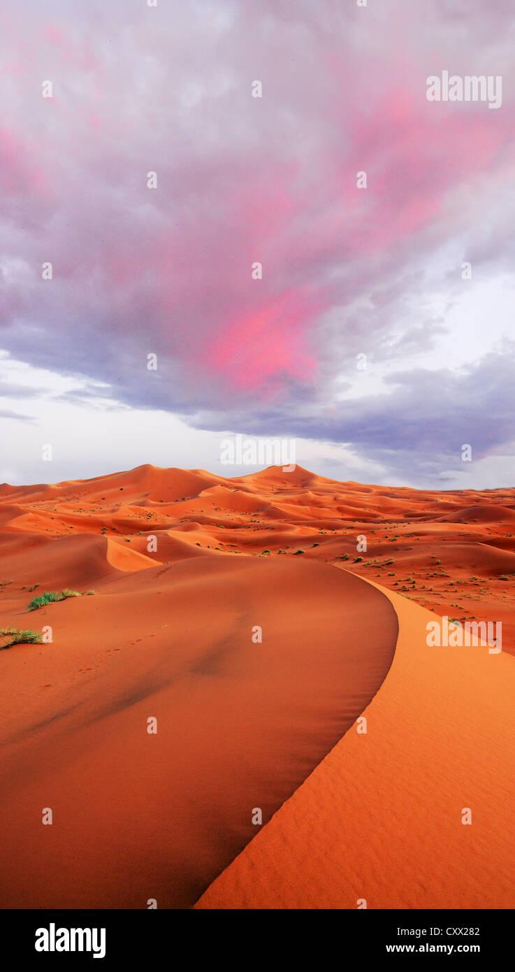 Dunes façonnées par le vent et l'heure Photo Stock
