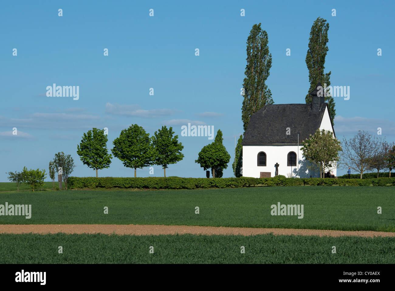Heilig Kreuz Kapelle, chapelle de la Sainte Croix, Mertloch, Rhénanie-Palatinat, PublicGround Photo Stock
