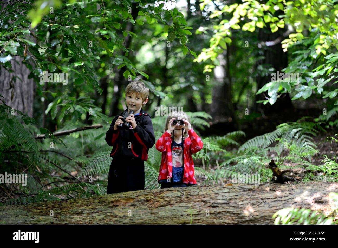 Jeune garçon et fille (frère et soeur) L'observation des oiseaux dans les bois en été publié Photo Stock