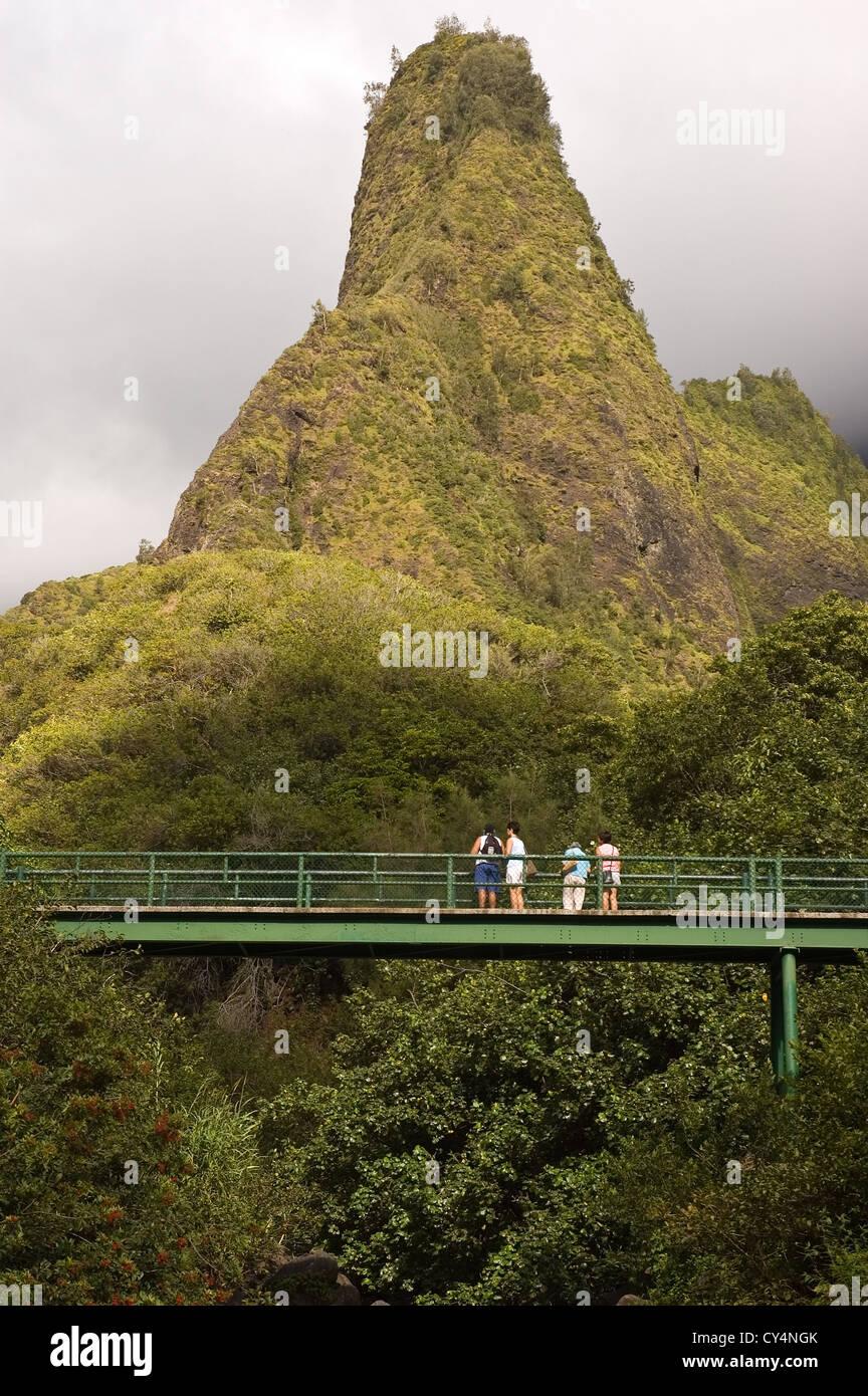 Elk284-4066v Hawaii, Maui, l'IAO Valley State Park, l'IAO Needle Photo Stock
