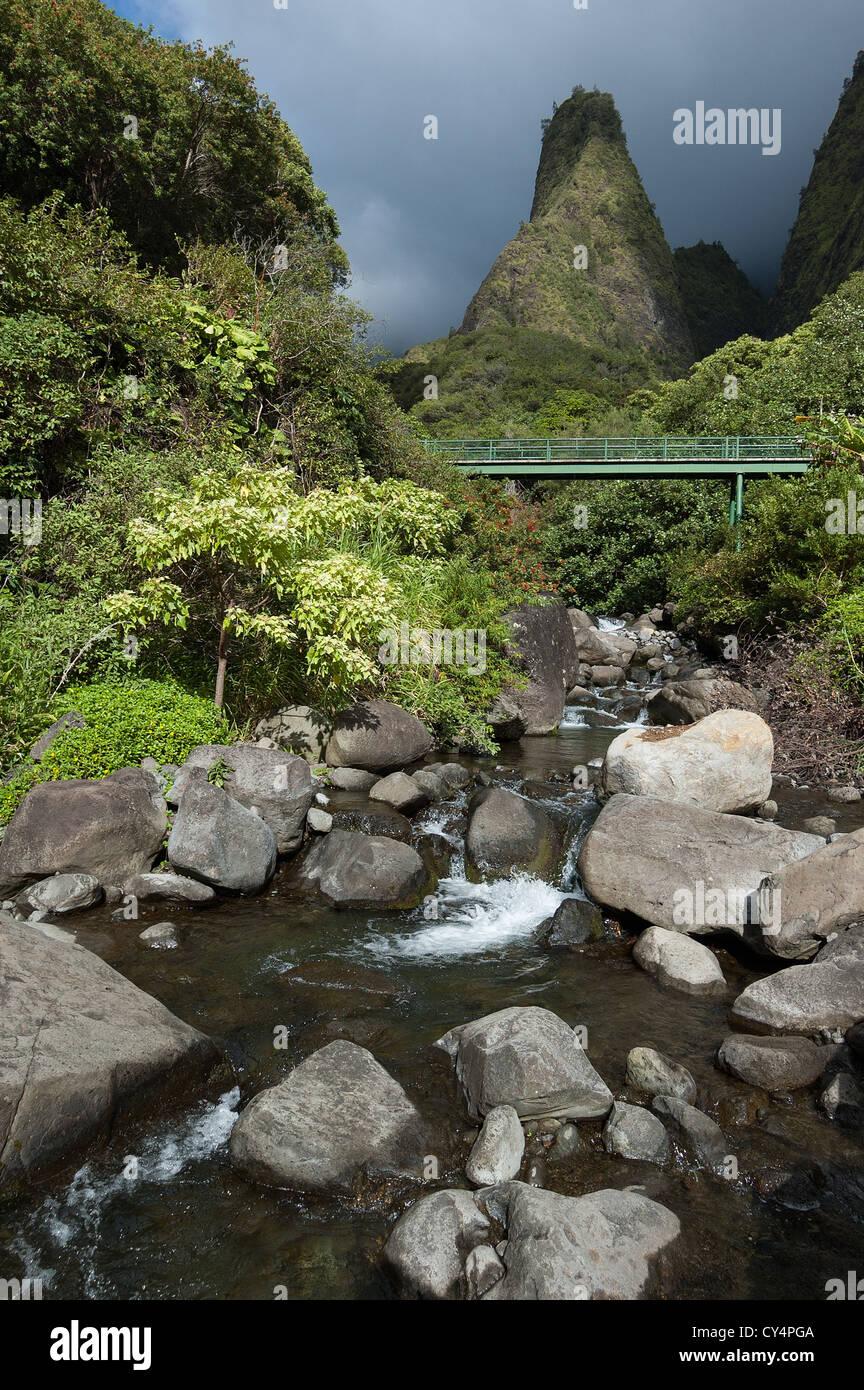 Elk284-4046v Hawaii, Maui, l'IAO Valley State Park, l'IAO Needle Photo Stock