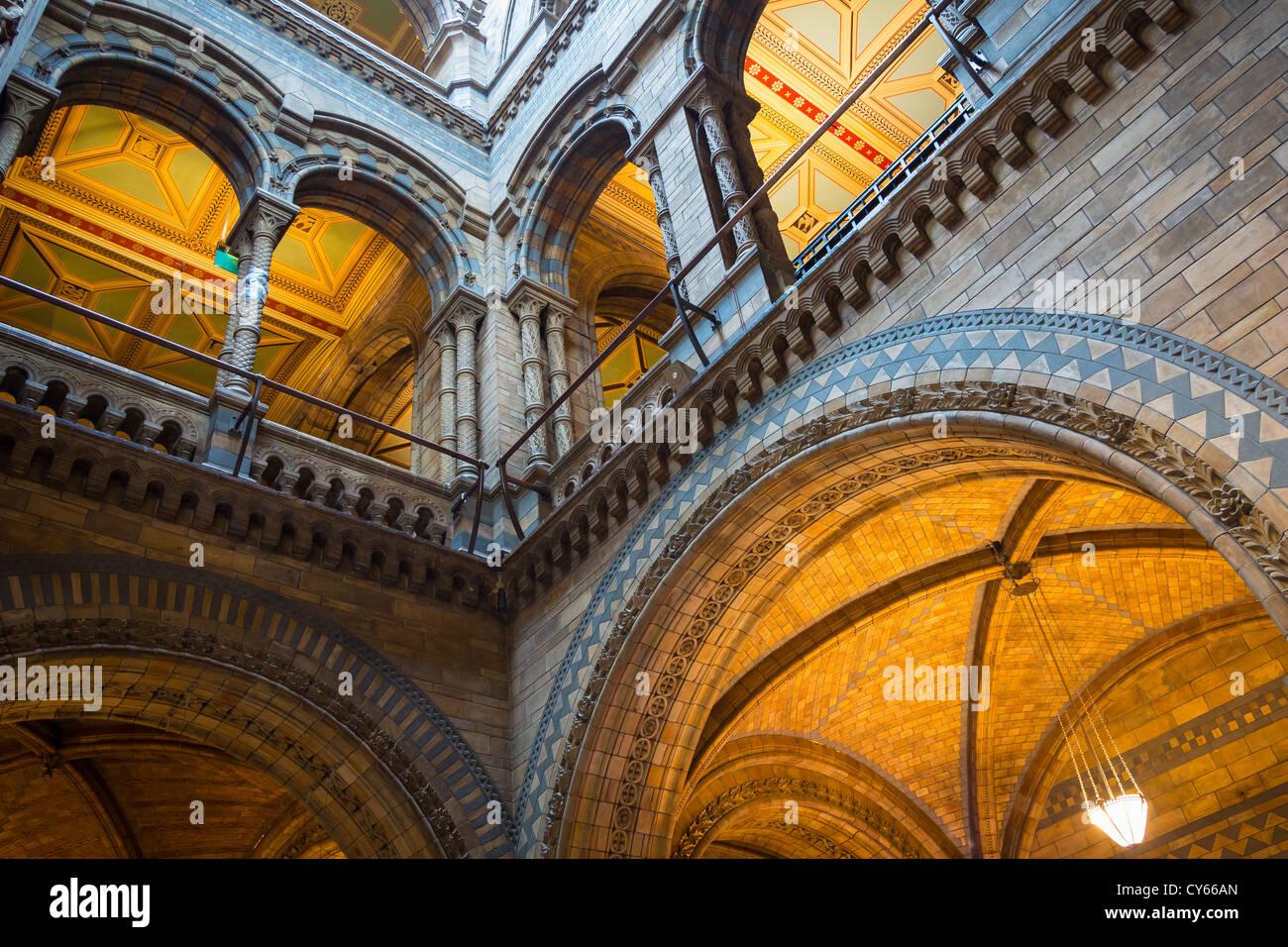 Le Musée d'Histoire Naturelle est sur Exhibition Road, South Kensington, Londres, Angleterre Photo Stock