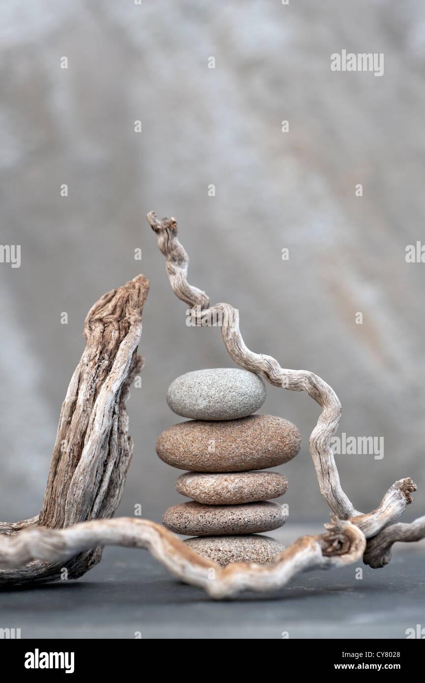Rotts et pierres de rivière photographié sur la pierre. Photo Stock
