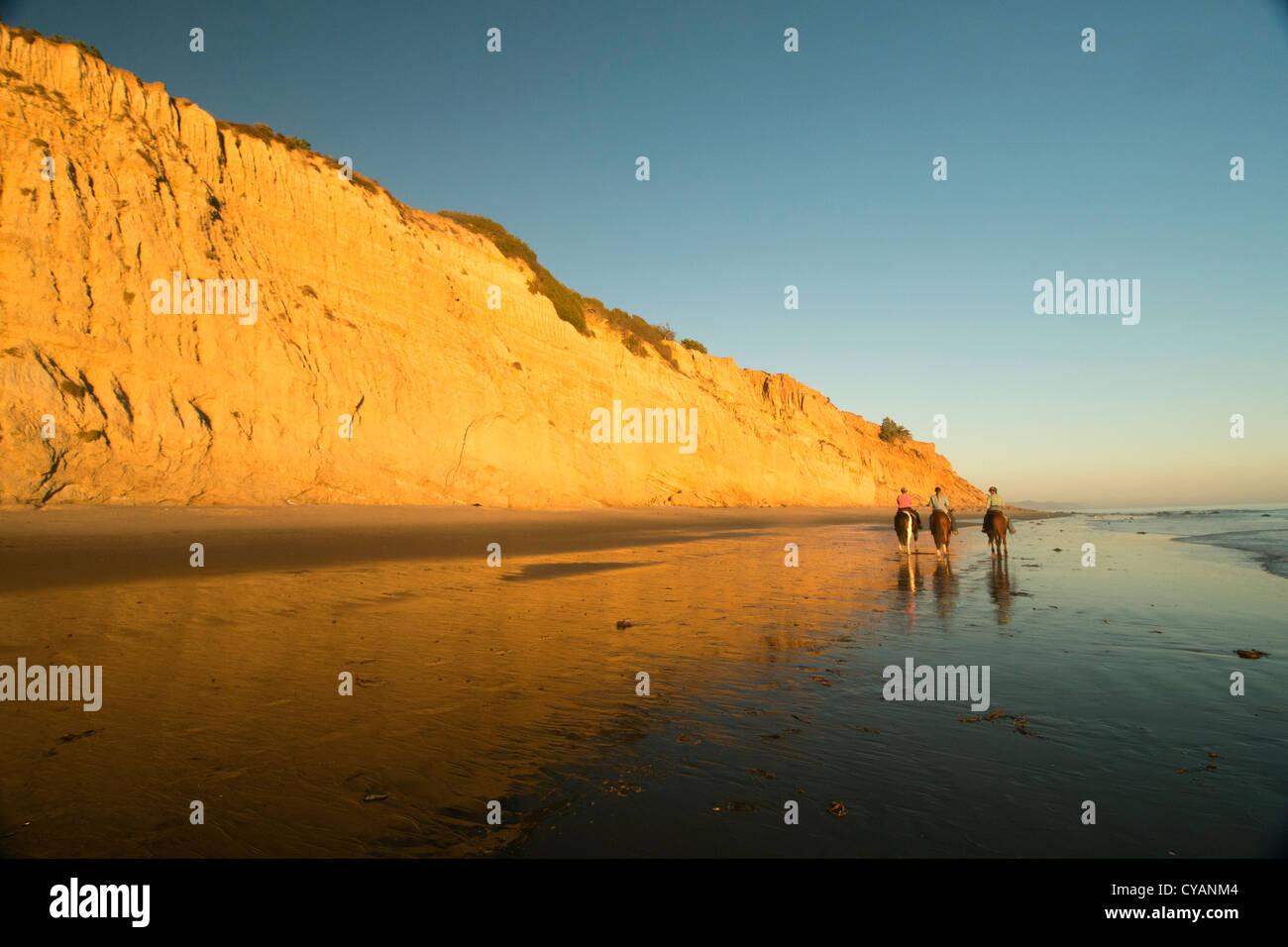 Cavaliers sur la plage de Summerland au coucher du soleil Santa Barbara  California USA Photo Stock 971d281ef931