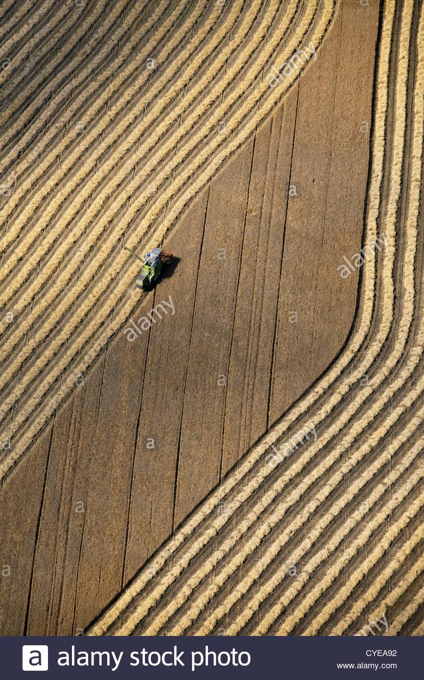 Les Pays-Bas, Donderen, Moissonneuse-batteuse, la récolte du blé champ. Vue aérienne. Photo Stock