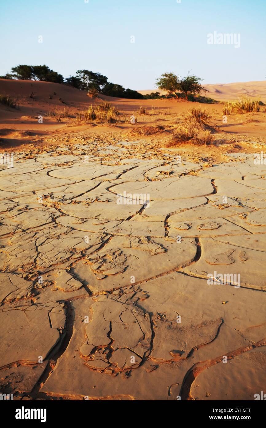 Terre de la sécheresse Photo Stock