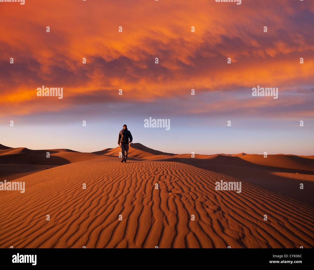 Randonnée pédestre dans le désert de Namib Photo Stock