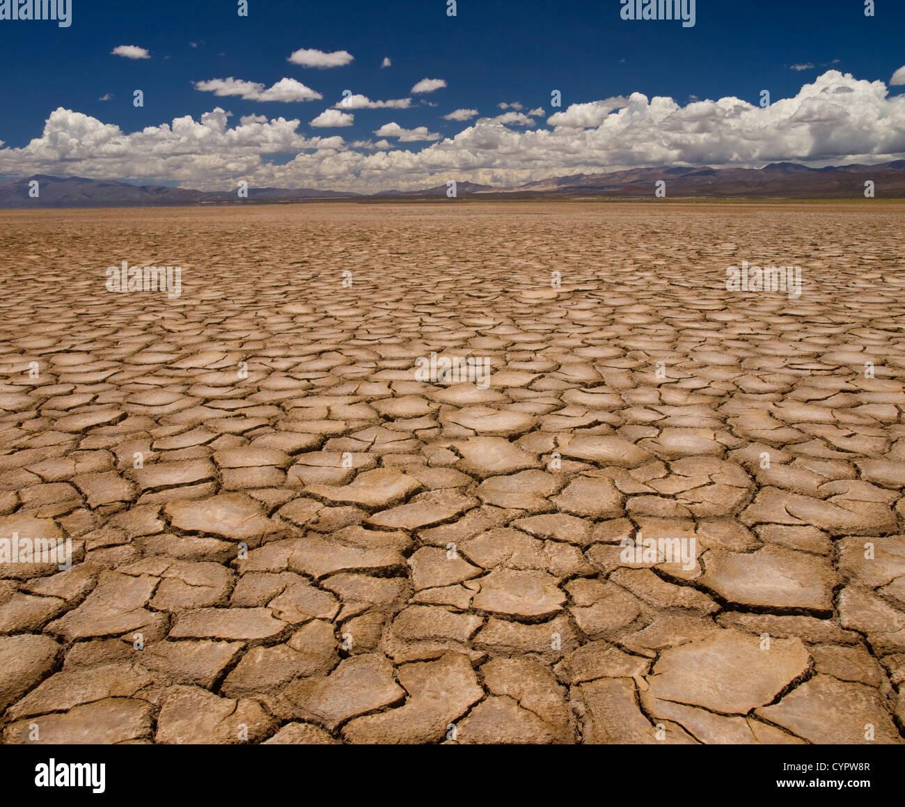 Grand champ de terre cuite après une longue sécheresse. Photo Stock