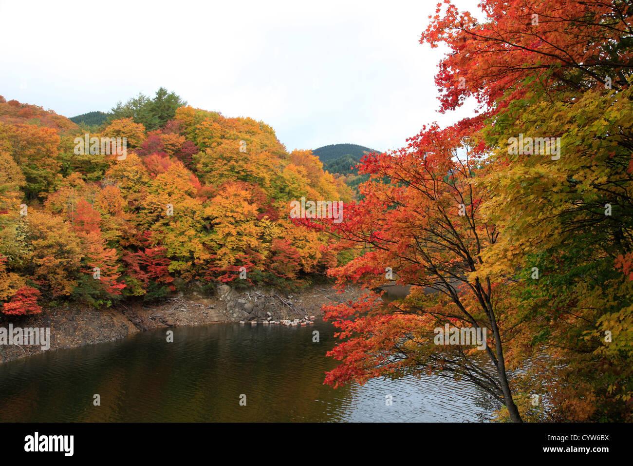 Taihei Lake aux couleurs de l'automne Akita Japon Tohoku Photo Stock