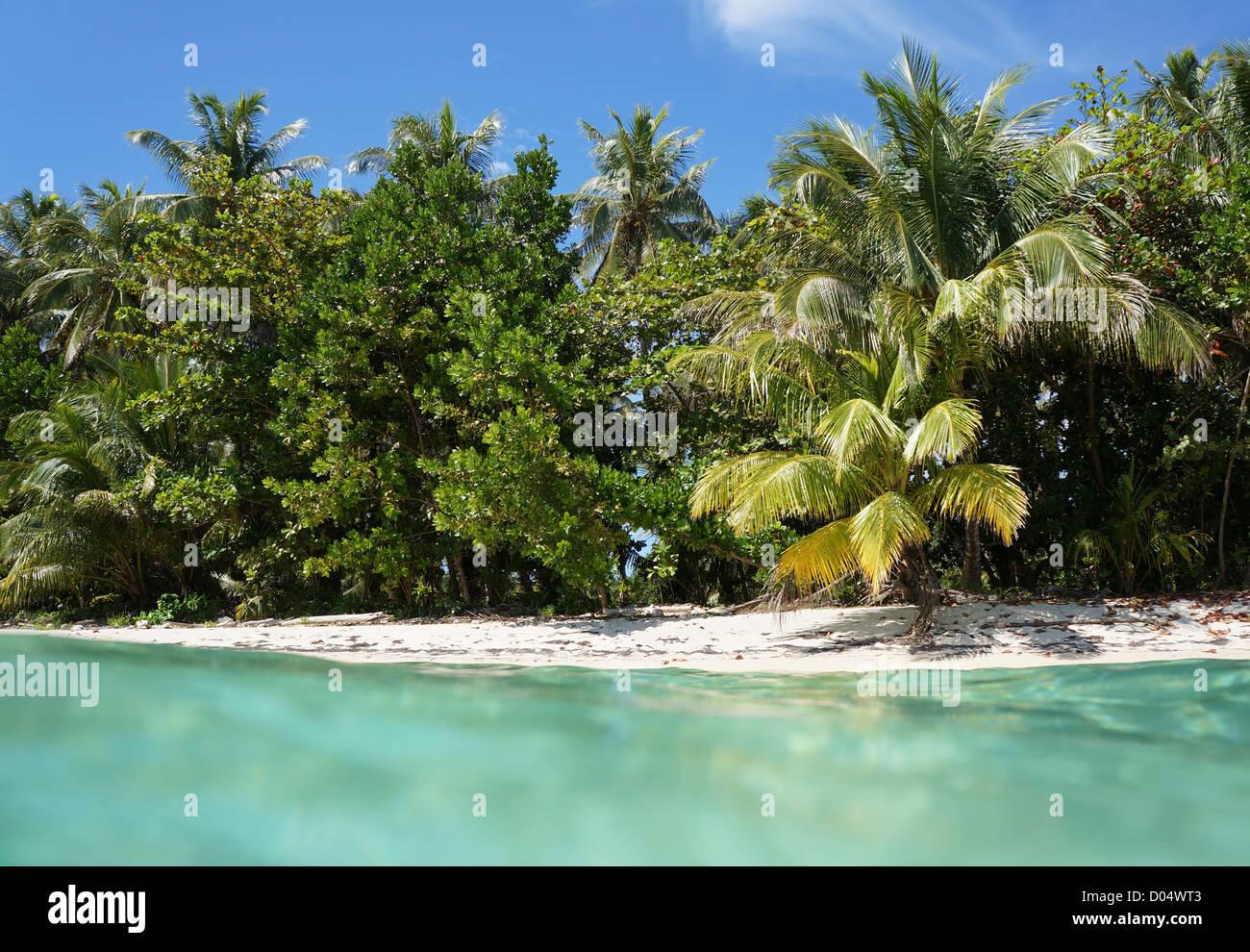 Côte plage tropicale avec sa végétation luxuriante vu à partir de la surface de l'eau, mer Photo Stock