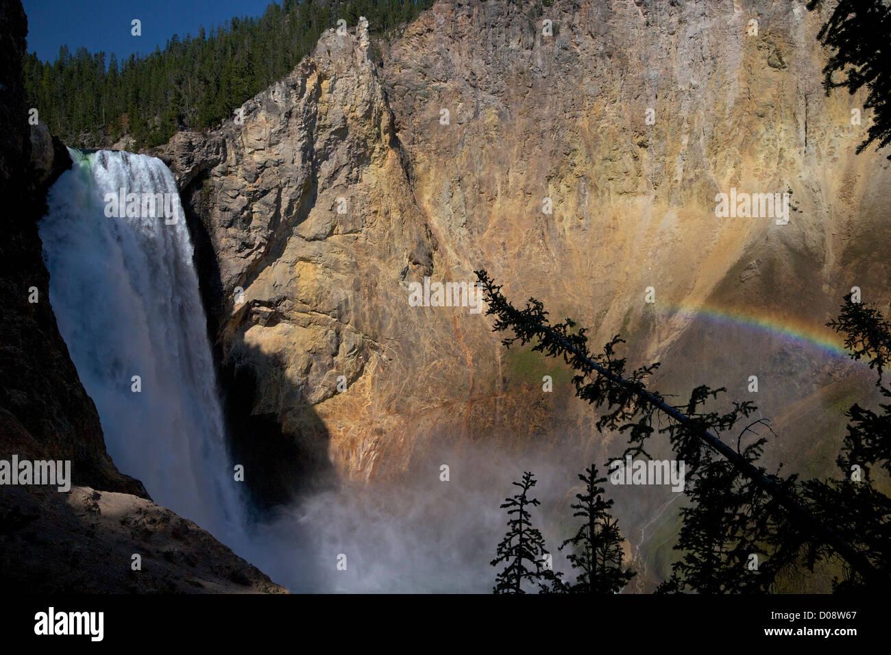 Arc-en-ciel sur Lower Falls de l'Oncle Tom's Point, Grand Canyon de la Yellowstone River, le Parc National de Yellowstone, Banque D'Images