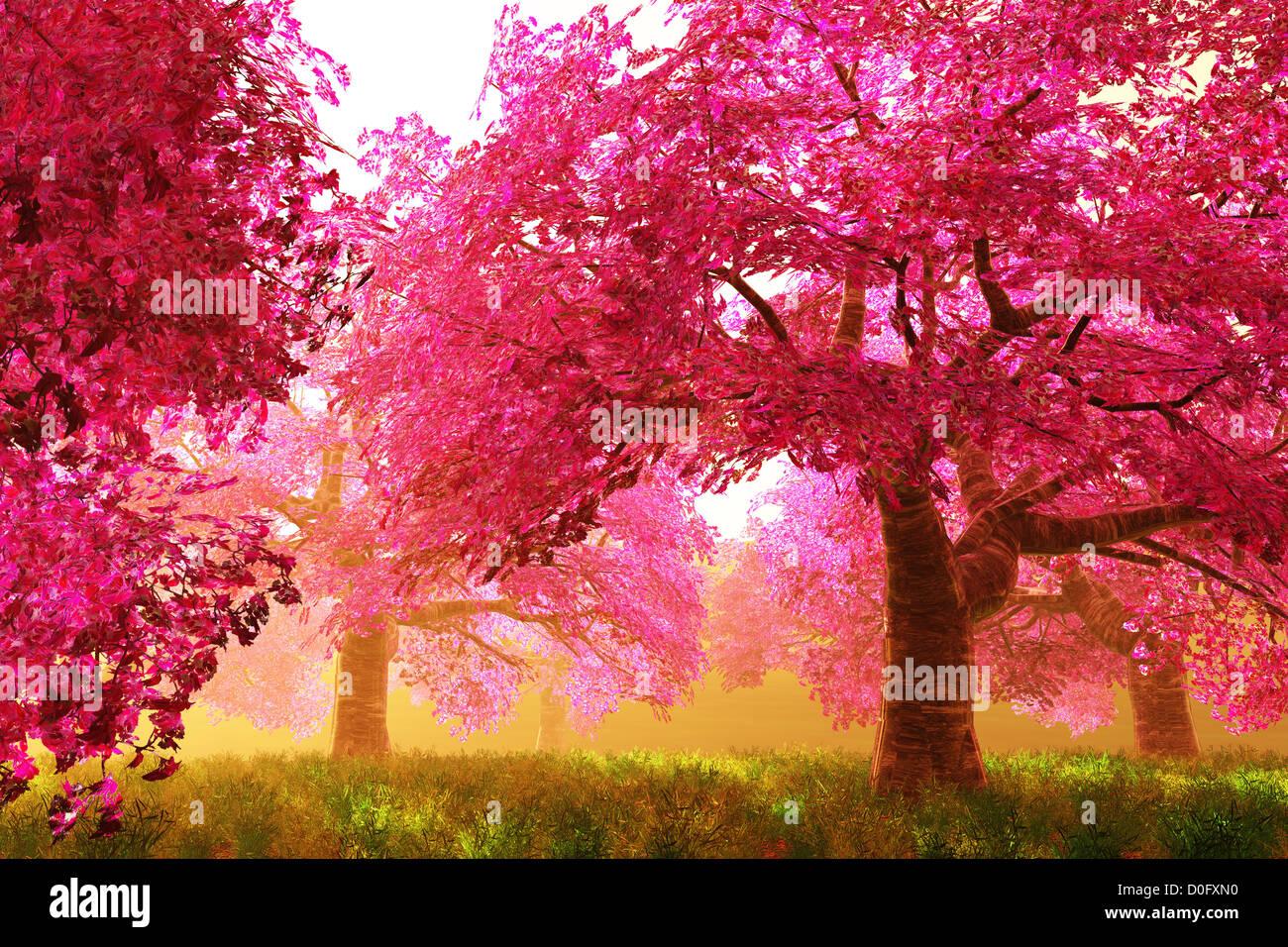 Les Fleurs De Cerisier Mysterieux Jardin Japonais Rendu 3d Cartoon