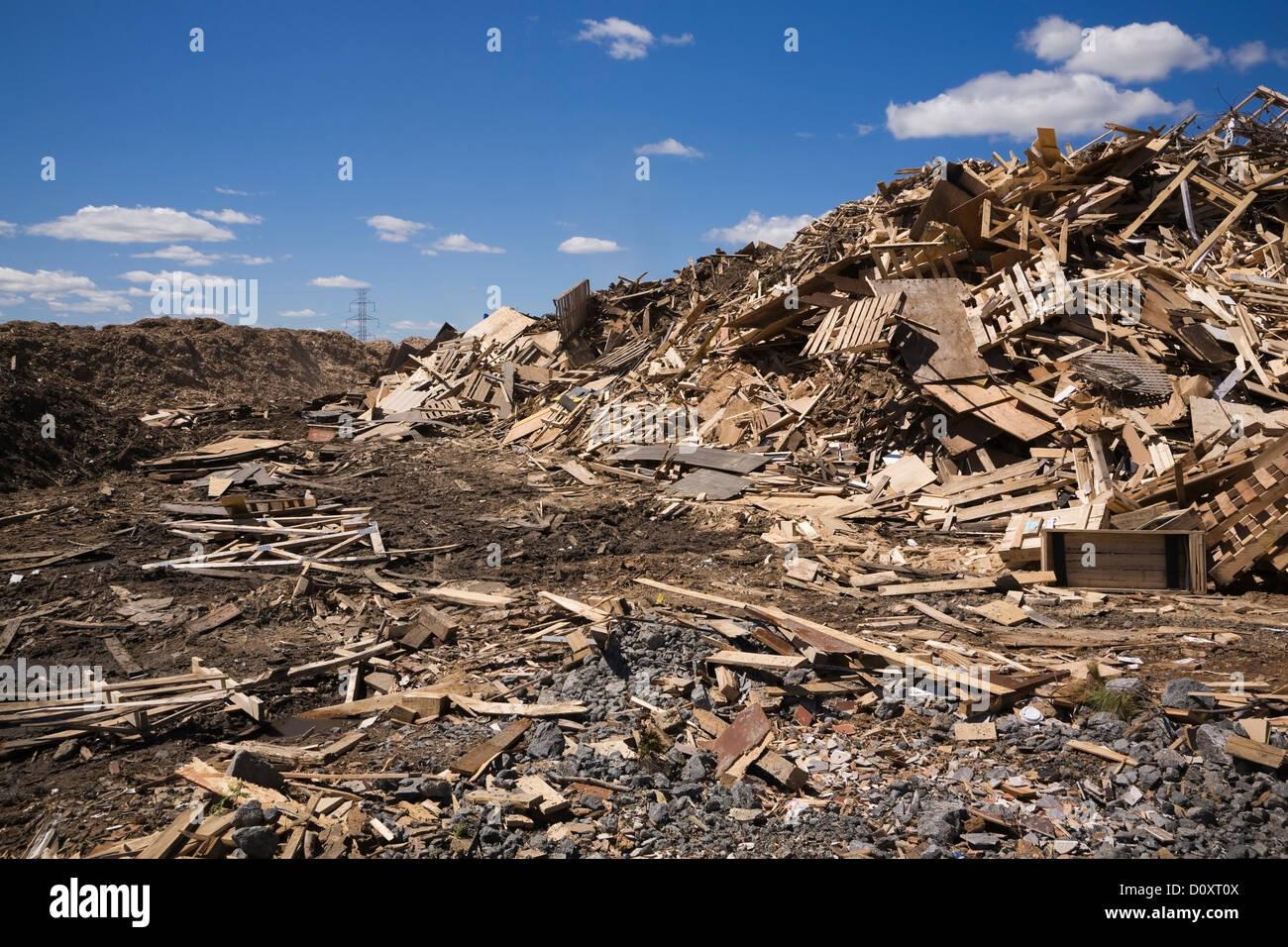 Pile de bois jetés au site de gestion des déchets Photo Stock