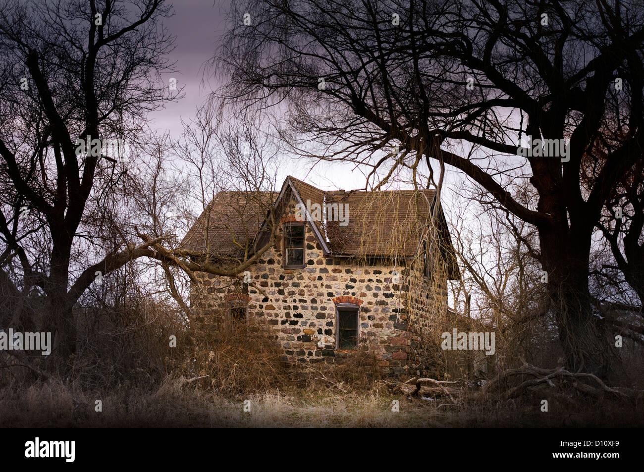 petite maison abandonn e dans les bois banque d 39 images photo stock 52266573 alamy. Black Bedroom Furniture Sets. Home Design Ideas