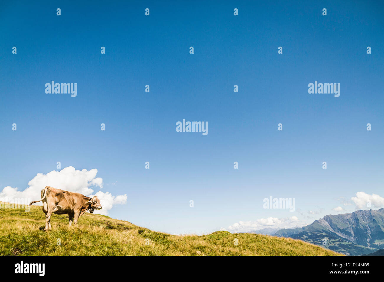 Vue aérienne du paysage rural Photo Stock