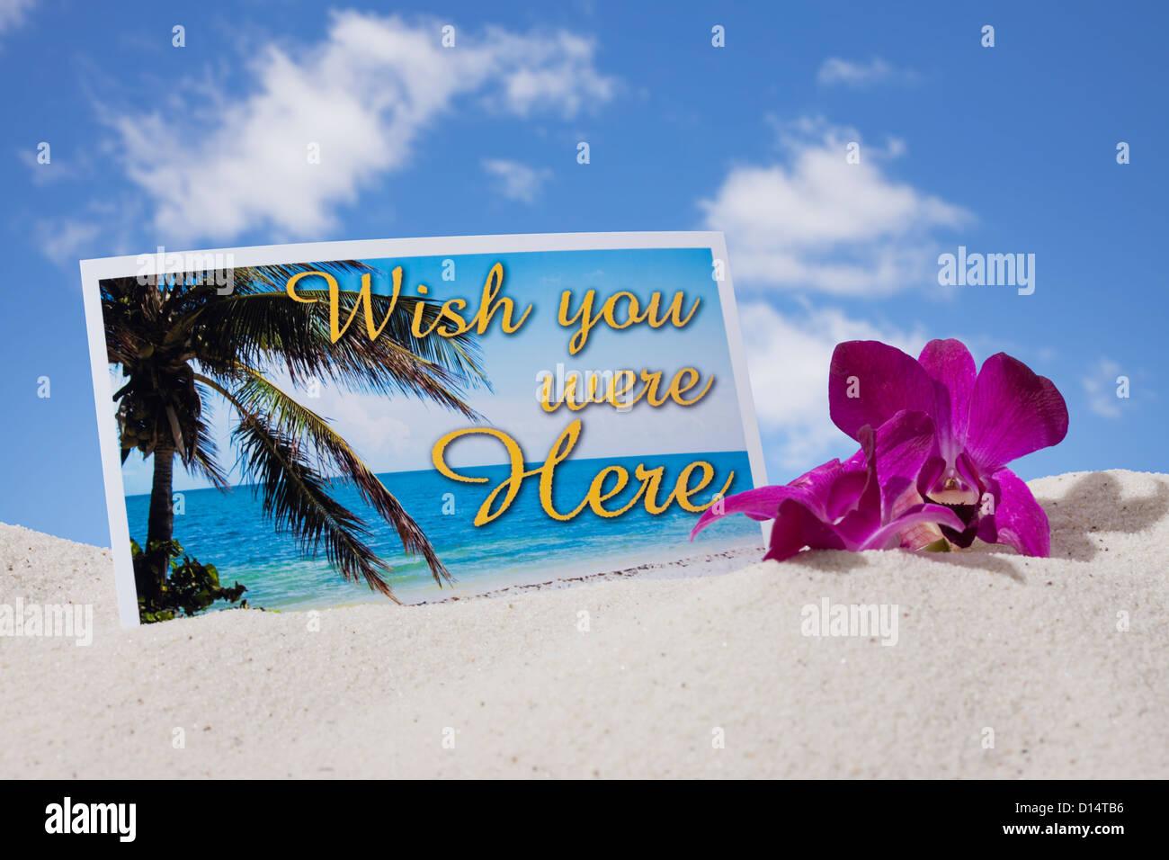 États-unis, Illinois, Metamora, carte postale et fleur tropicale dans le sable sur la plage Photo Stock