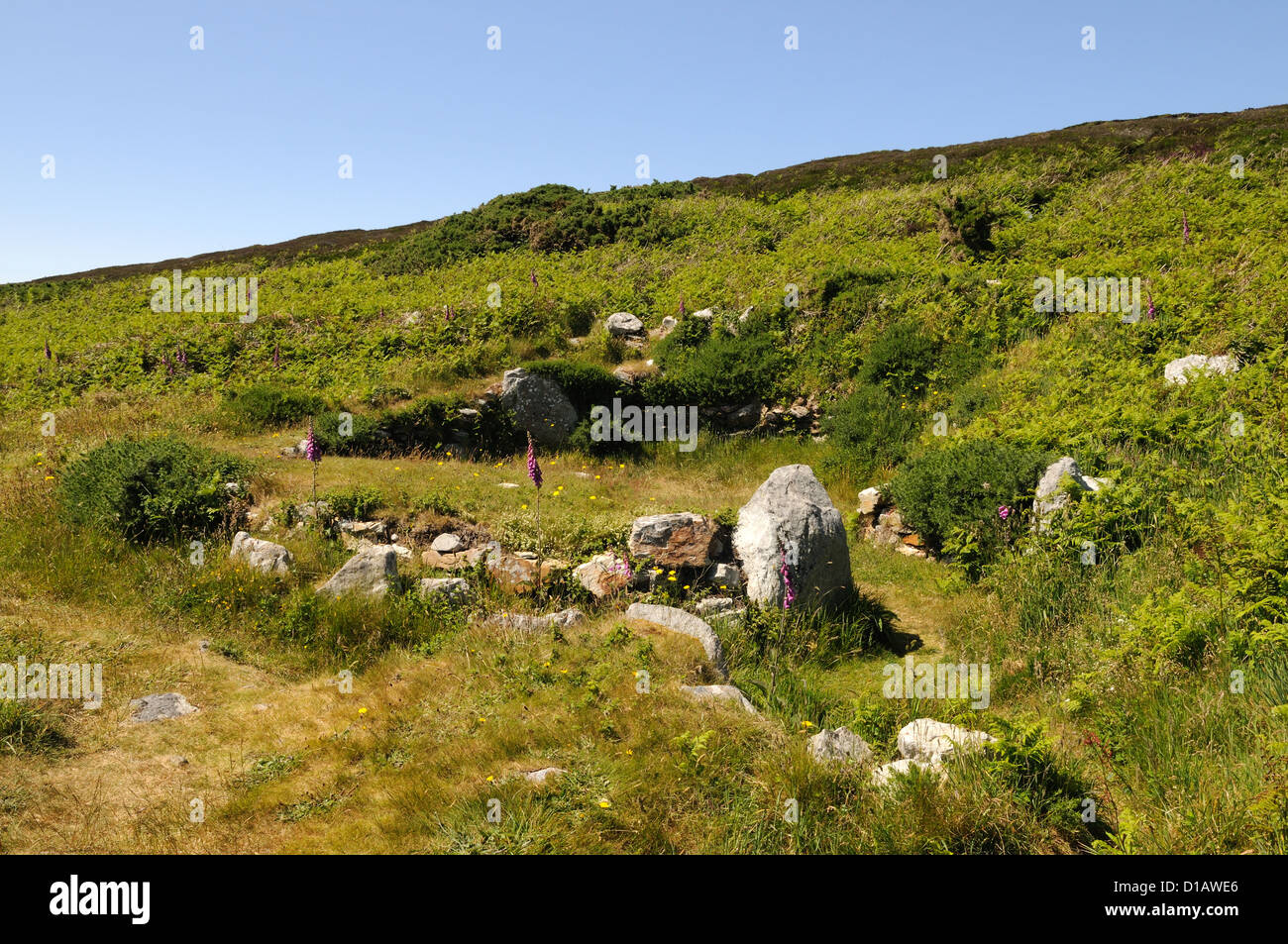 Gwyleddod Cytiau'r cabanes de pierre préhistoriques irlandais hut circles Holyhead Mountain Anglesey Pays Photo Stock