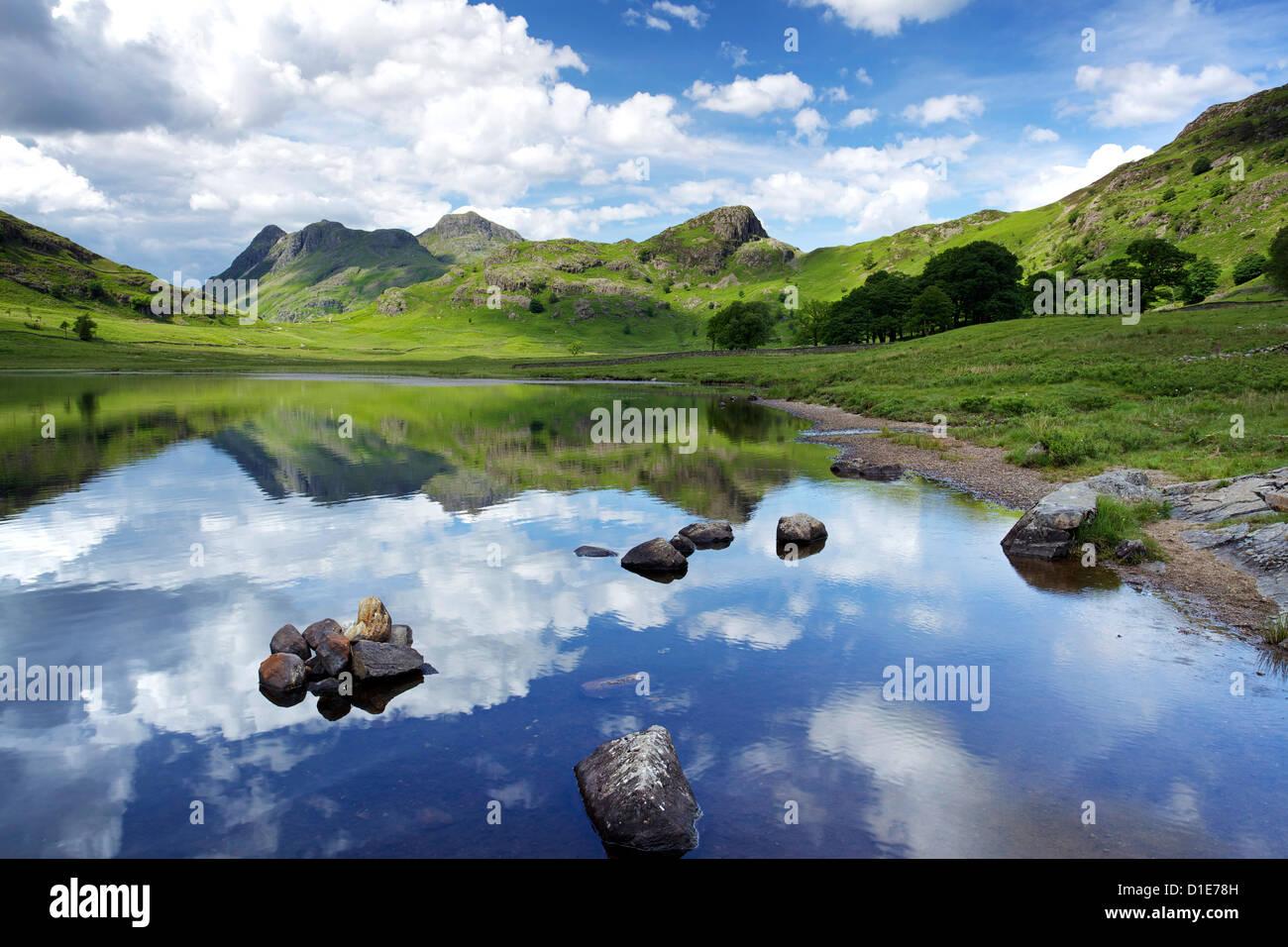 Blea Tarn et Langdale Pikes, Parc National de Lake District, Cumbria, Angleterre, Royaume-Uni, Europe Banque D'Images