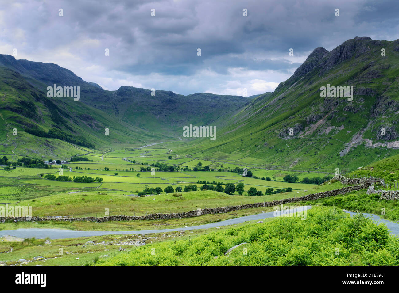 Langdale Pikes, Parc National de Lake District, Cumbria, Angleterre, Royaume-Uni, Europe Banque D'Images