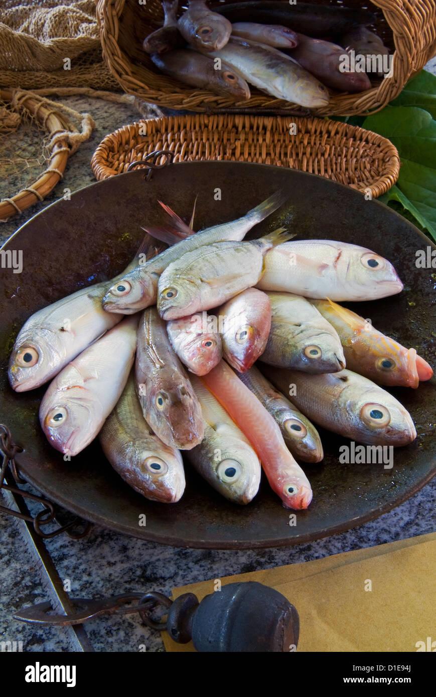 Équilibre Steelyard contenant du poisson méditerranéen, dorade, Grondin, comber et bandfish rouge, Photo Stock