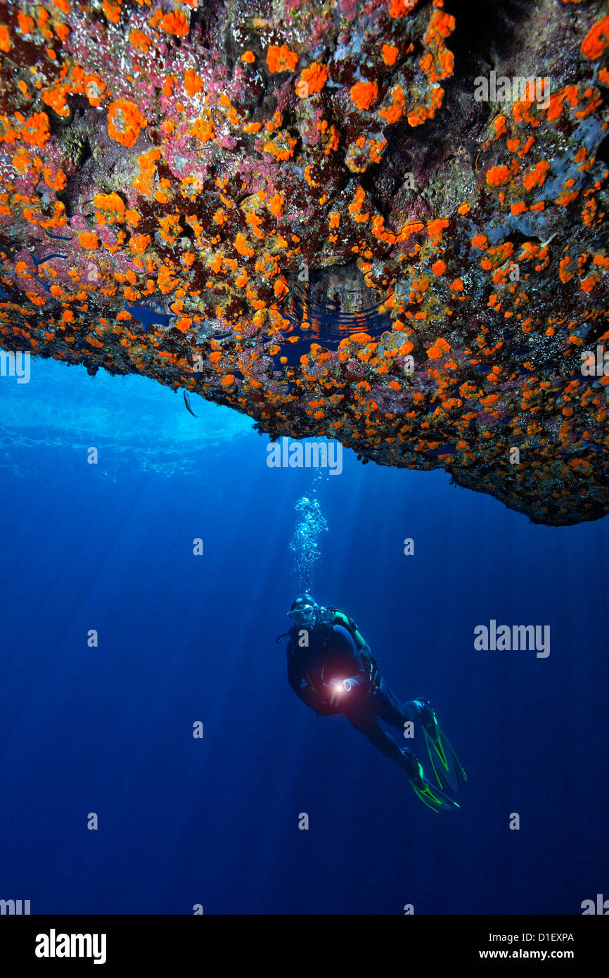 Plongeur au la Grotte Bleue, Mer Méditerranée près de Gozo, Malte, underwater Photo Stock