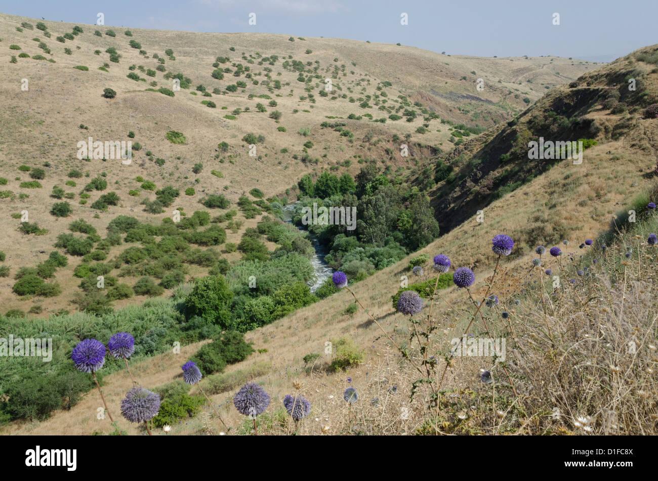 Vue sur la rivière de la région montagneuse de la Jordanie Jordan River Trail. Haute Galilée, Israël, Photo Stock