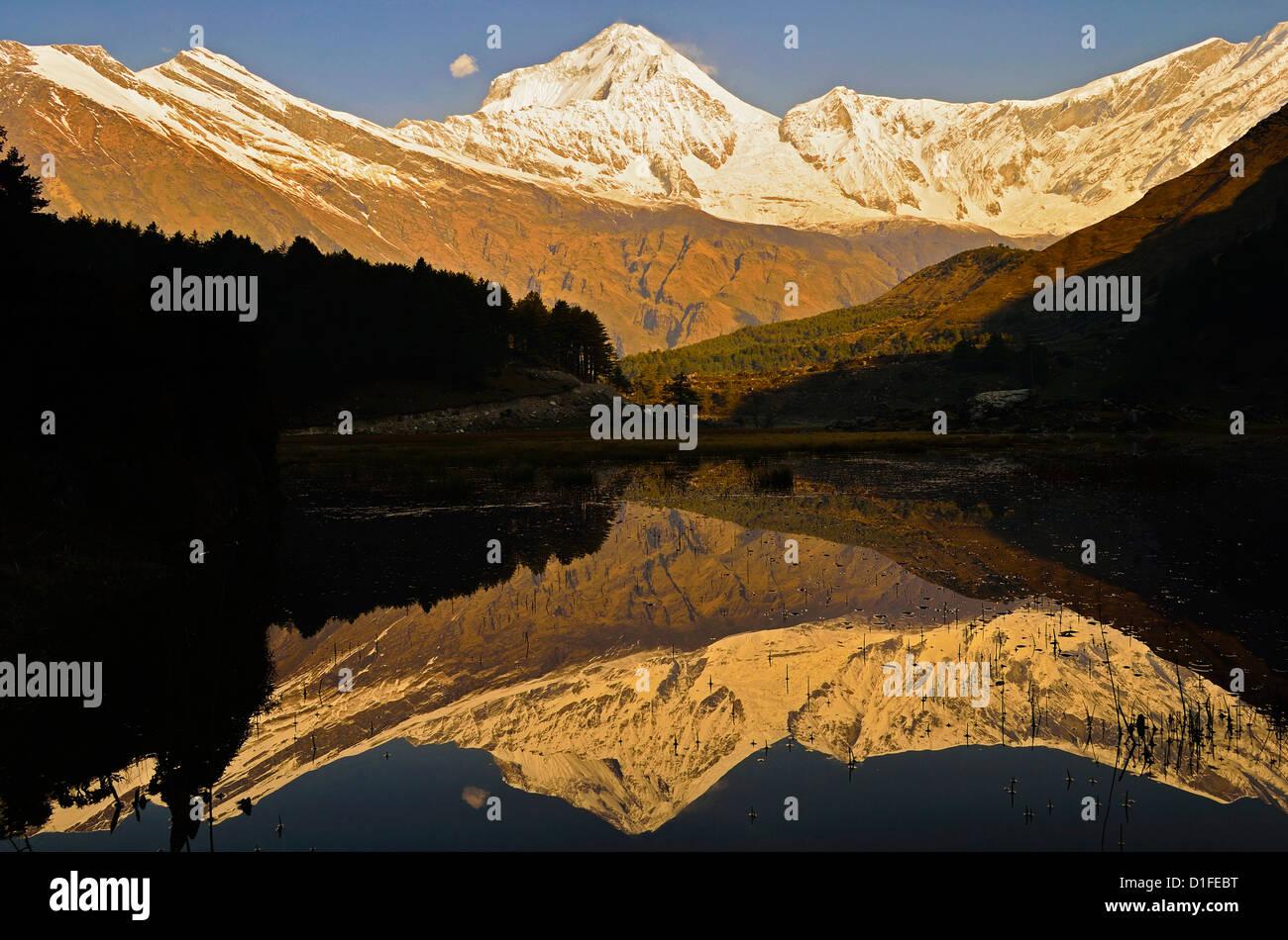 Dhaulagiri Himal vu de Titi, de l'Annapurna Conservation Area, Dhawalagiri (Dhaulagiri), Région de l'Ouest Photo Stock