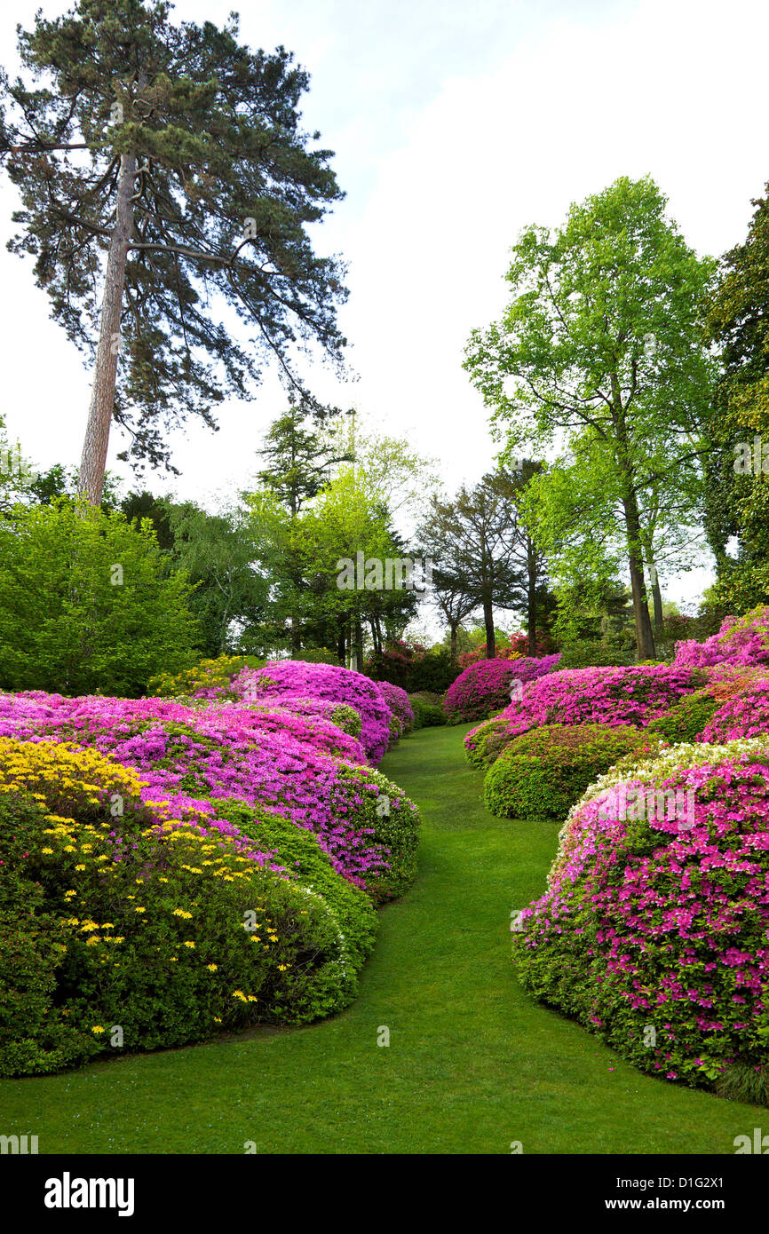 Bloom photos bloom images alamy for Les jardins de la villa slh