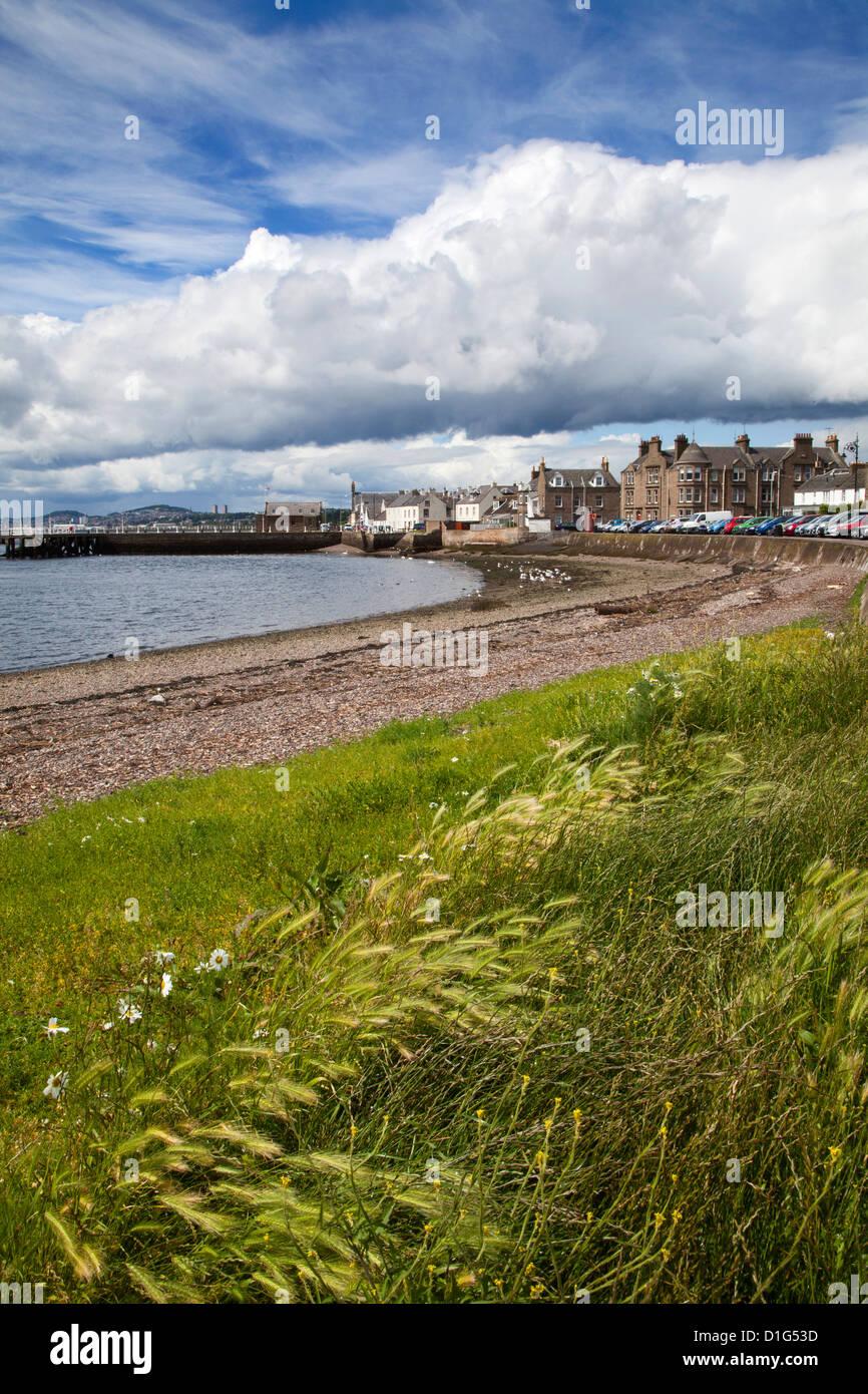 Les herbes balayées par le par la plage de galets à Broughty Ferry, Dundee, Ecosse, Royaume-Uni, Europe Photo Stock